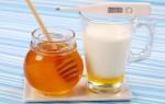 Польза молока с медом от простуды: целебные свойства и рецепты