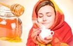 Чем полезен мед при простудном заболевании: целебные свойства и рецепты