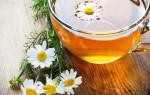 Рецепты с ромашкой при простуде: полезные свойства лекарственного растения