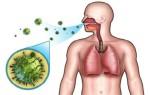 Разновидности бактериального бронхита, причины возникновения, симптомы и способы лечения
