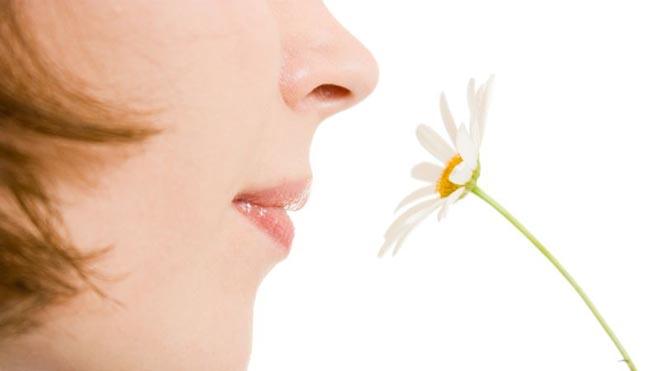 девушка вдыхает аромат ромашки