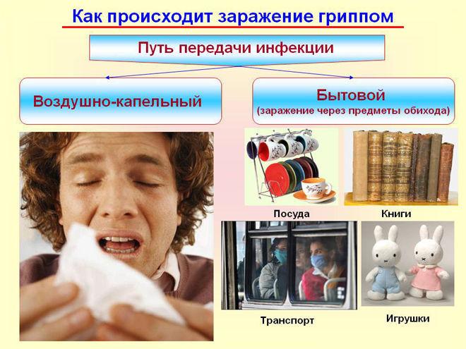 пути передачи гриппа