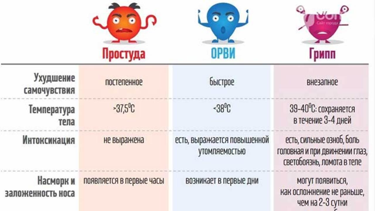 различия между простудой и орви