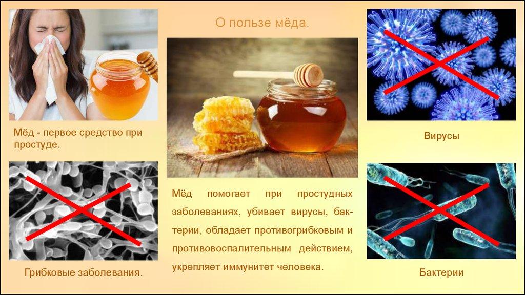 польза меда при простуде