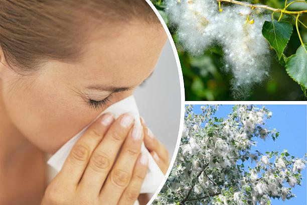 аллергия у девушки