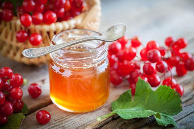 мед и калина