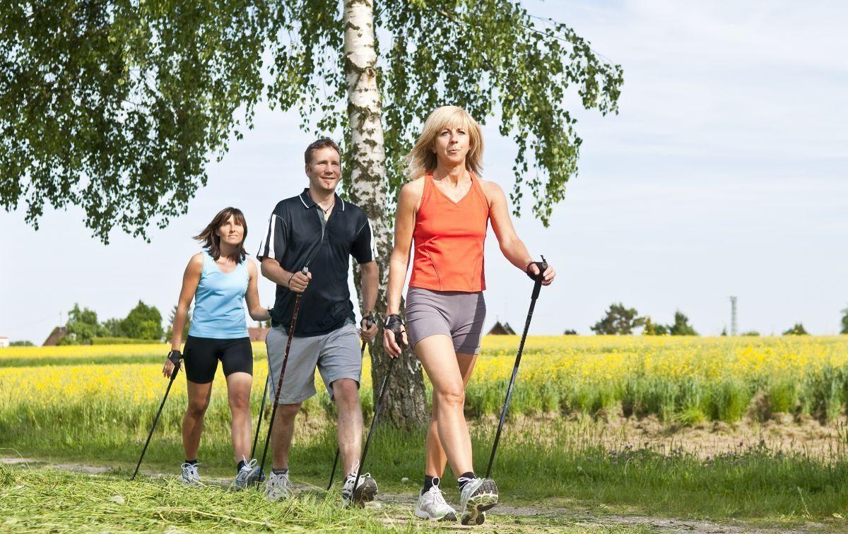 группа людей занимается спортивной ходьбой