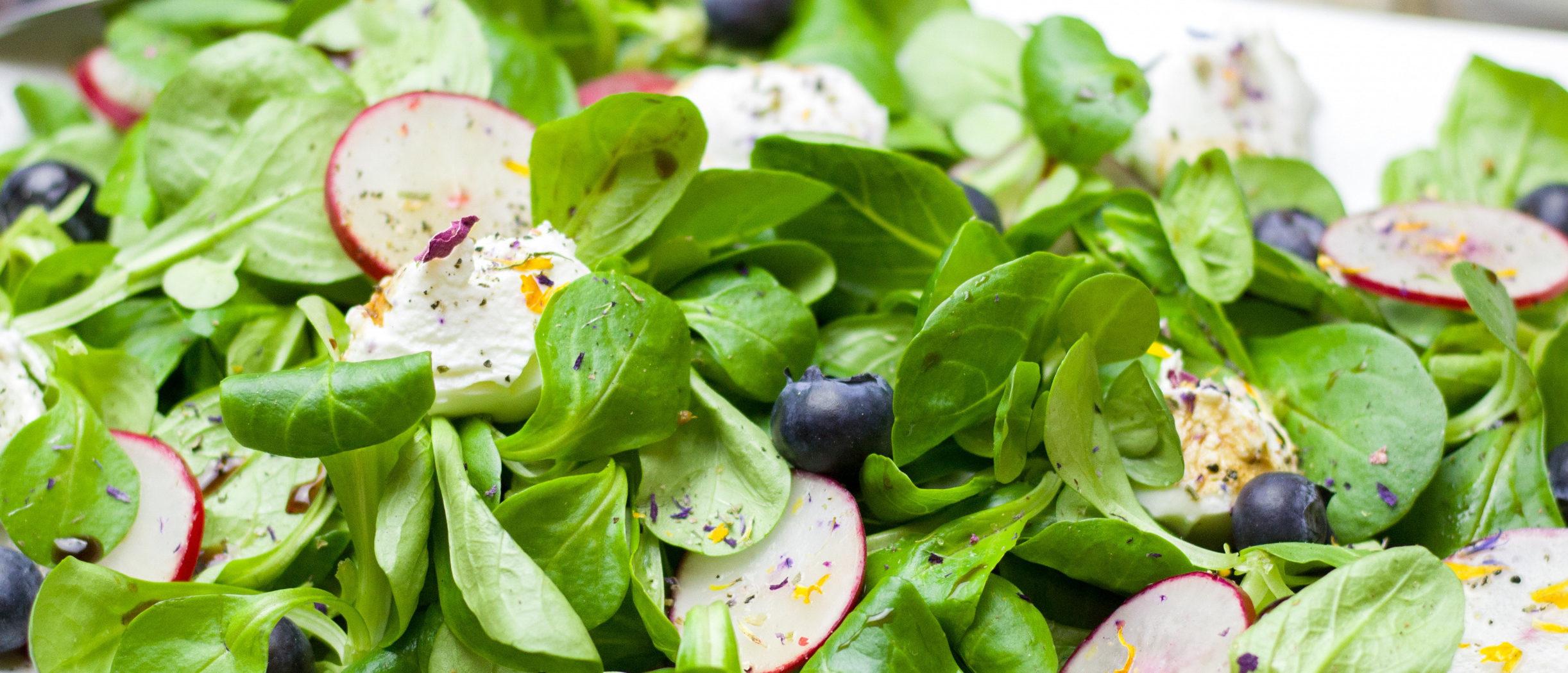 овощной салат с черникой