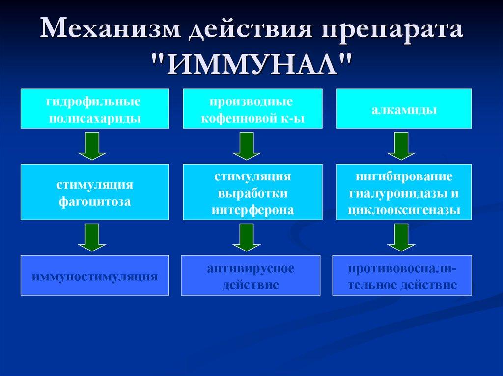 механизм действия иммунала